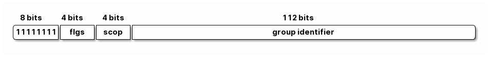 IPv6 多播地址组成